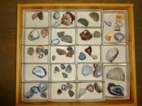 podsbirky-HMT_Geologické obory 3_