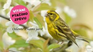 Banner_Vitani_2018-FINAL_text_II-1920x1080