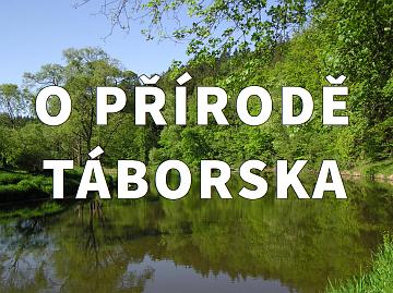 o prirode Taborska